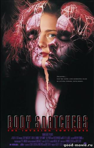 Постер Похитители тел