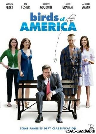 Постер Птицы Америки