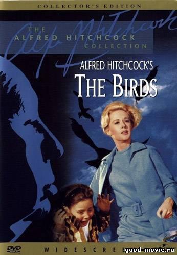 Постер Птицы (Альфред Хичкок, 1963)