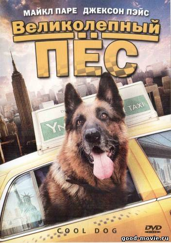 Постер Великолепный пес (Крутой пес)