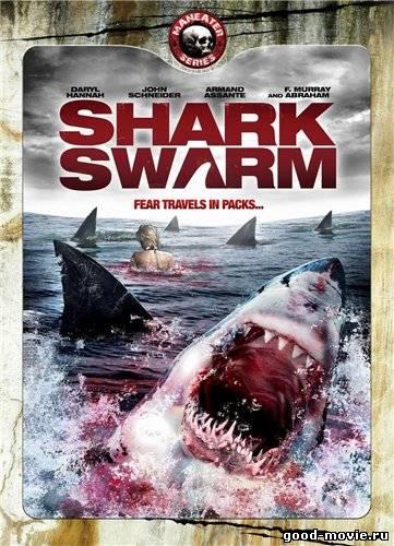 Постер Стая акул
