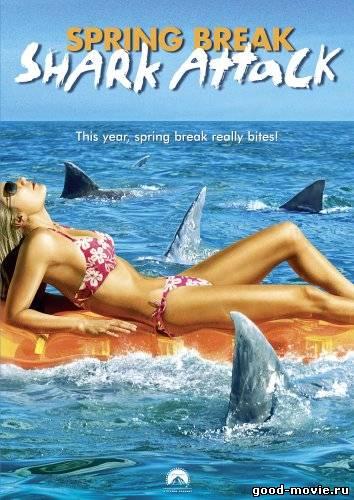 Постер Нападение акул в весенние каникулы