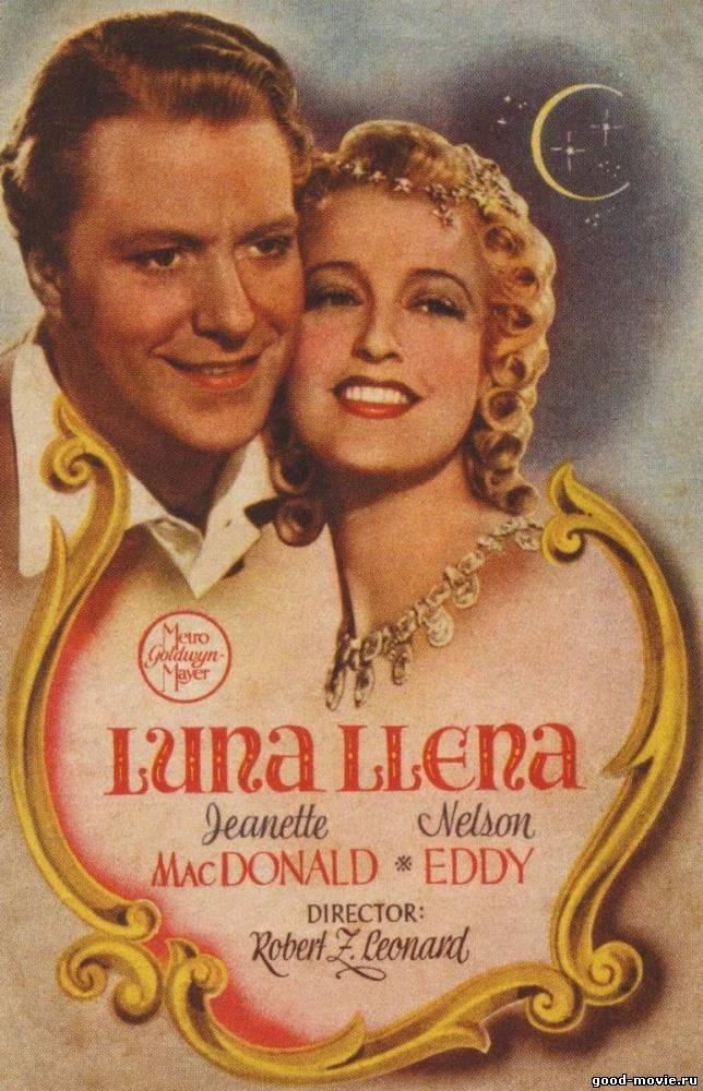 Постер Команда кабади «Веннила»