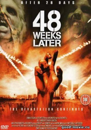 Постер 48 недель спустя