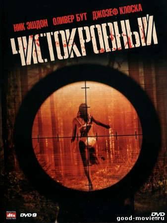 Постер Чистокровный