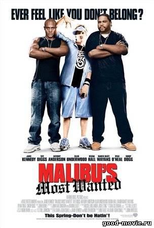 Постер Разыскивается в Малибу