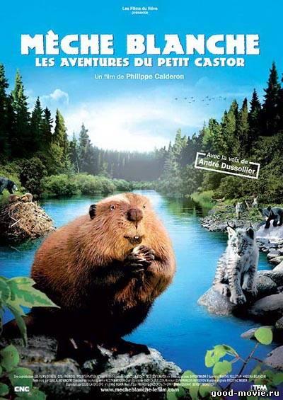 Постер Приключения бобрёнка